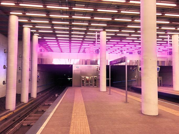 pink lights.jpg