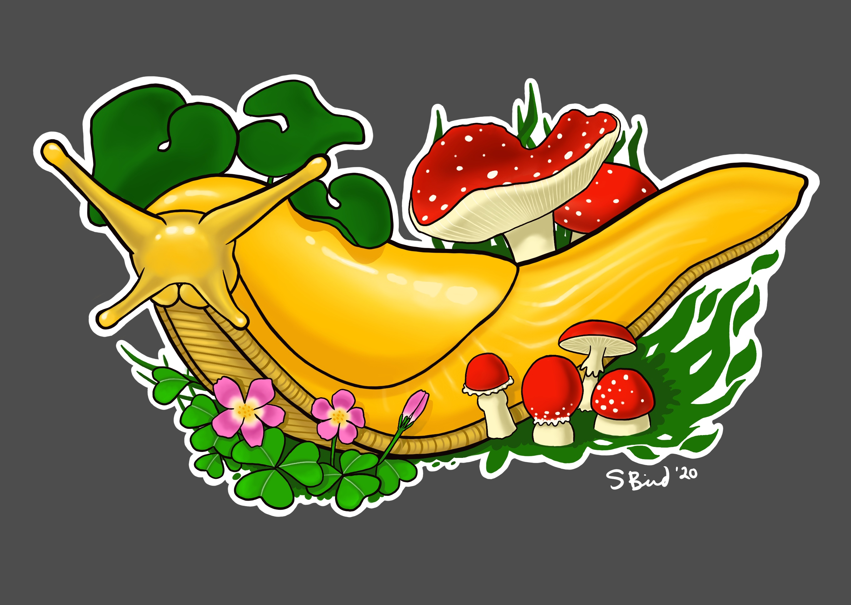 Banana Slug Design