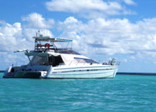 MARIE GALANTE Catamaran moteurs Adulte 110€