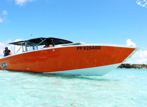 LES SAINTES Speed Boat Adulte 110€
