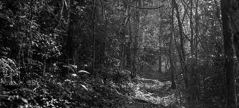Untitled_Panorama1112.jpg