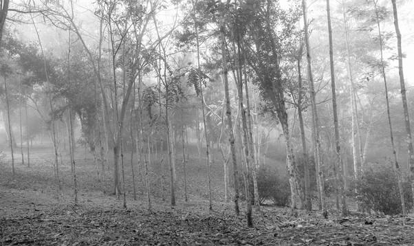 Untitled_Panorama2222.jpg