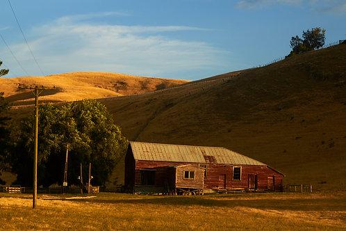 Red Barn, Hawkes Bay (Framed)