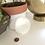 Thumbnail: Small Circular Selenite Charging Plate
