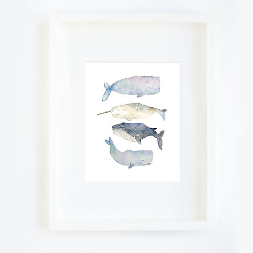 Whales Four