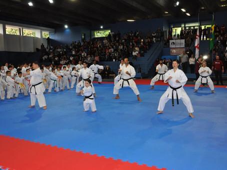 Karate na mídia