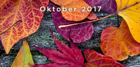 Oktober - News