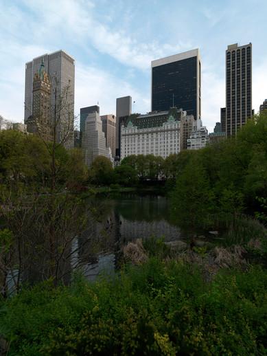 Teresa Sapey NYC pic 21 - A 0394.jpg