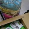 ↓ てまえは、紙の猫砂 6袋、  その奥に置いてあるのは使わなくなった毛布類