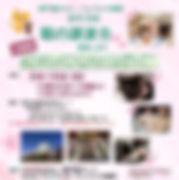 第43回譲渡会サムネール.jpg