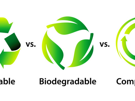 Comparing Compostable, Biodegradable, And Recyclable Plastics: Watch Out For Green Washing!