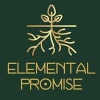 elemental promise.jpg