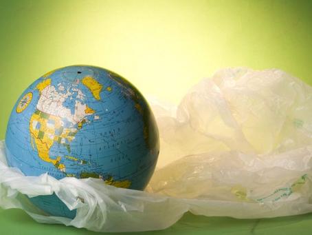 Do Plastic Bans Work?