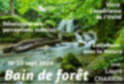 Vignette_BDF_Taillé.jpg