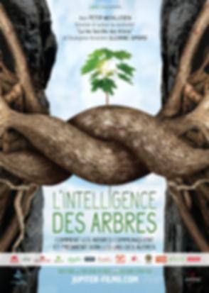 l_intelligence_des_arbres_affiche.jpg