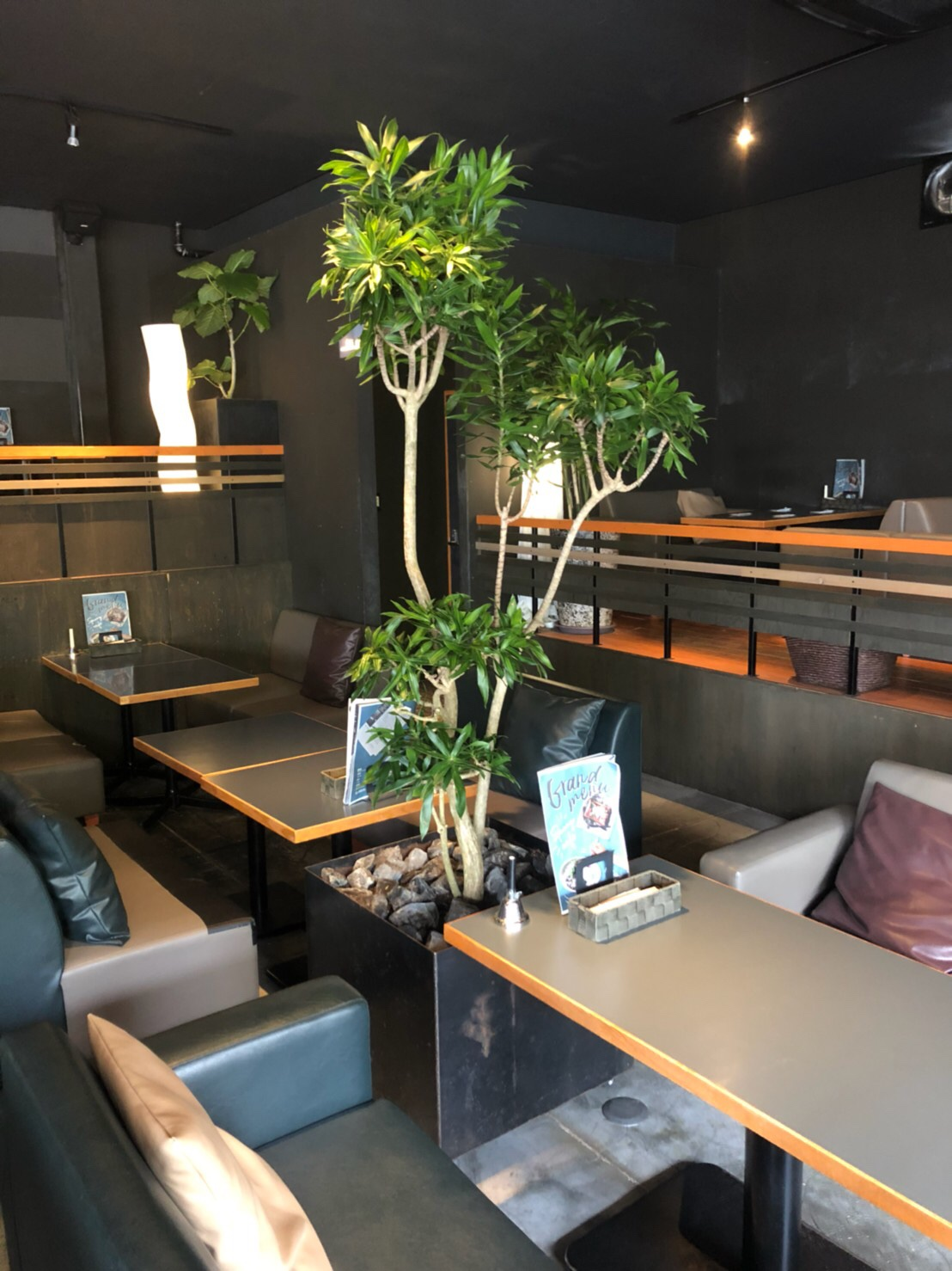 刈谷・spoonycafe様・観葉植物