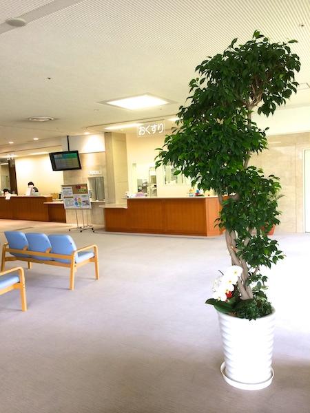 徳洲会大垣病院②