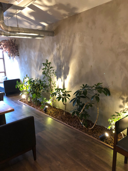 カフェスペース・グリーン