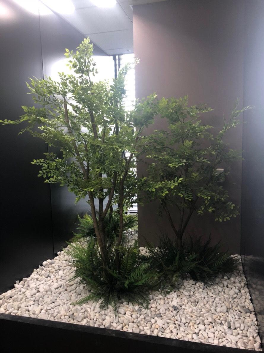 オフィス内庭園