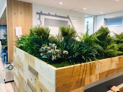 オフィスデザイン 観葉植物 フェイクグリーン  造作什器
