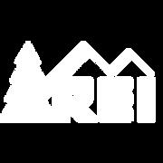 kisspng-rei-logo-retail-brand-dick-s-spo