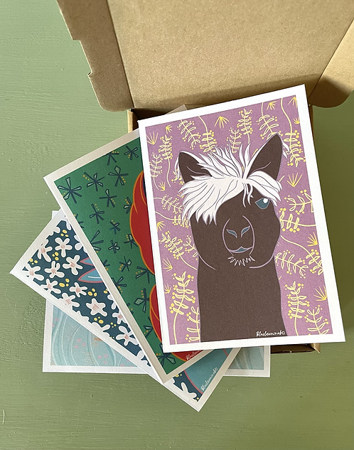 Pack of  10 Coloured Animal Illustration A6 Cards