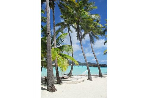 Traumstrand Bora Bora, Paradiesstrand Bora-Bora, schönstes Foto Bora Bora, Palmenstrand Bora-Bora, Fotos Polynesien, Tahiti