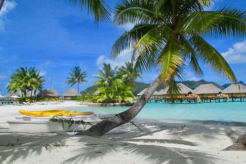 Bilder Bora Bora, Fotos Bora-Bora, Bilder Südsee, Images South Pacific, Fotos Südsee, Traumstrand Bora Bora, Palmen Südsee