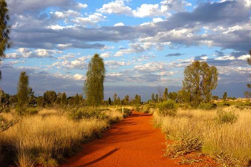 Outback Australien Bilder, Foto Outback Australien, schönstes Foto Outback, Rote Erde Australien Bild
