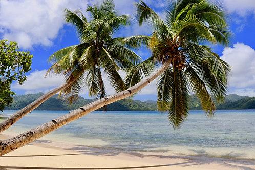 Matangi Island Fidschi, Matangi Island Fiji, schönste Strände Fidschi