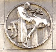Herophile, centre des dons du corps