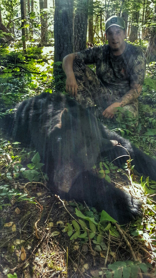Bear 2.jpeg