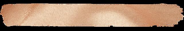 Silk Paint Strip - LONG.png