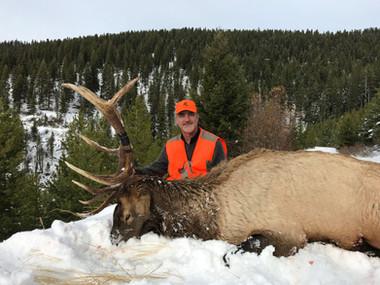 Trophy Bull Elk Hunt Montana.jpg