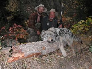 Wolf Hunt Montana.jpg