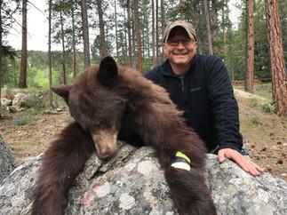 Spring Bear Hunt Missoula MT.jpg