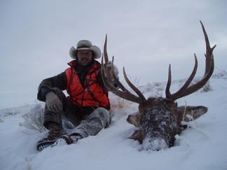 Montana Elk Hunt James Whitescarver.jpg