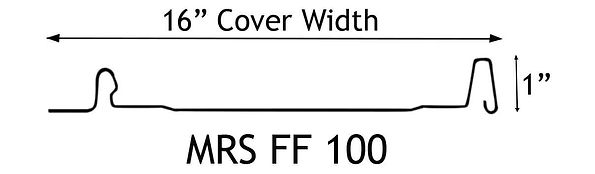 FF100-silohetteWEB.jpg
