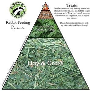 Brockswood Rabbit Diet Pyramid