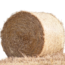 hay bale.png