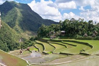 """필리핀 여행지 Banaue 바나우에 """"라이스테라스"""" 필리핀 관광명소 여행지"""