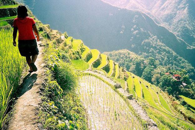 필리핀 여행지추천 코르디예라(Cordilleras) 의 Banaue 바나우에 라이스테라스 필리핀 관광명소 필리핀여행 마닐라친구들