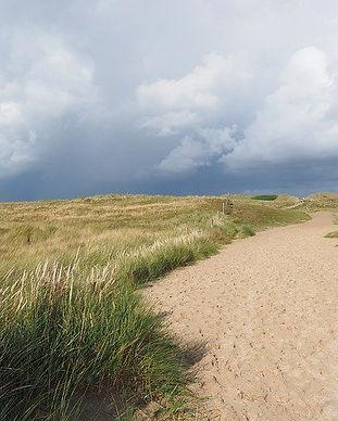 dune-landscape-54e8d0424a_640.jpg