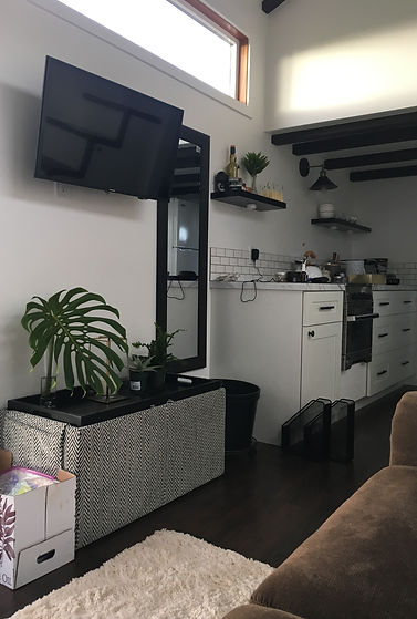 Modern interior tiny house