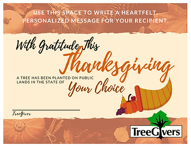 Happy Thanksgiving Tree Planting Gift