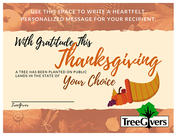 Thanksgiving Certificate.png