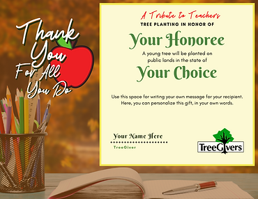 _A Tribute to Teachers Template -  Fall