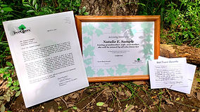 Gift additional tree plantings in Mom's honor