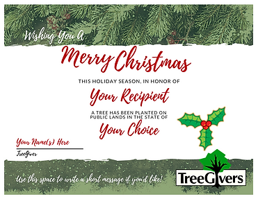 Plant a Tree for Christmas with a personalized gift
