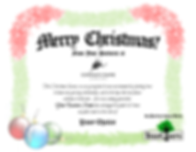 Merry Christmas Sample Certificate